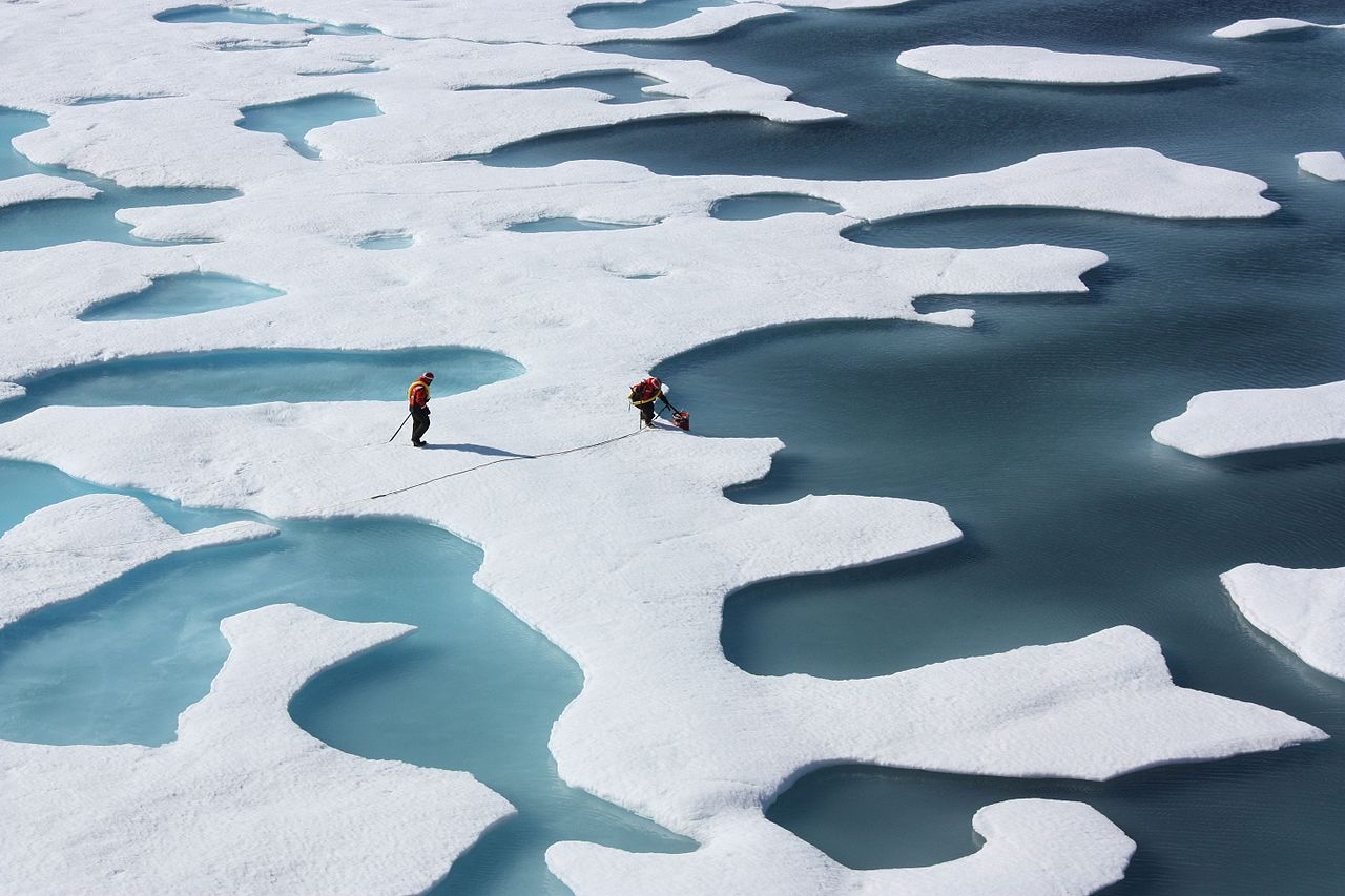 "Caption: ""Ponds on the Ocean"" - Sea ice atop the Arctic Ocean. NASA image acquired July 12, 2011"