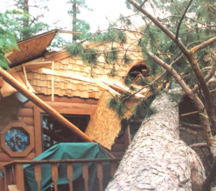 Caption: A large pine falls on a home during the 1999 Blowdown storm., Credit: Jim Cordes