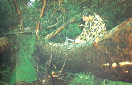 Caption: A BWCA camper after the July 4, 1999 Blowdown. Photo courtesy of Jim Cordes