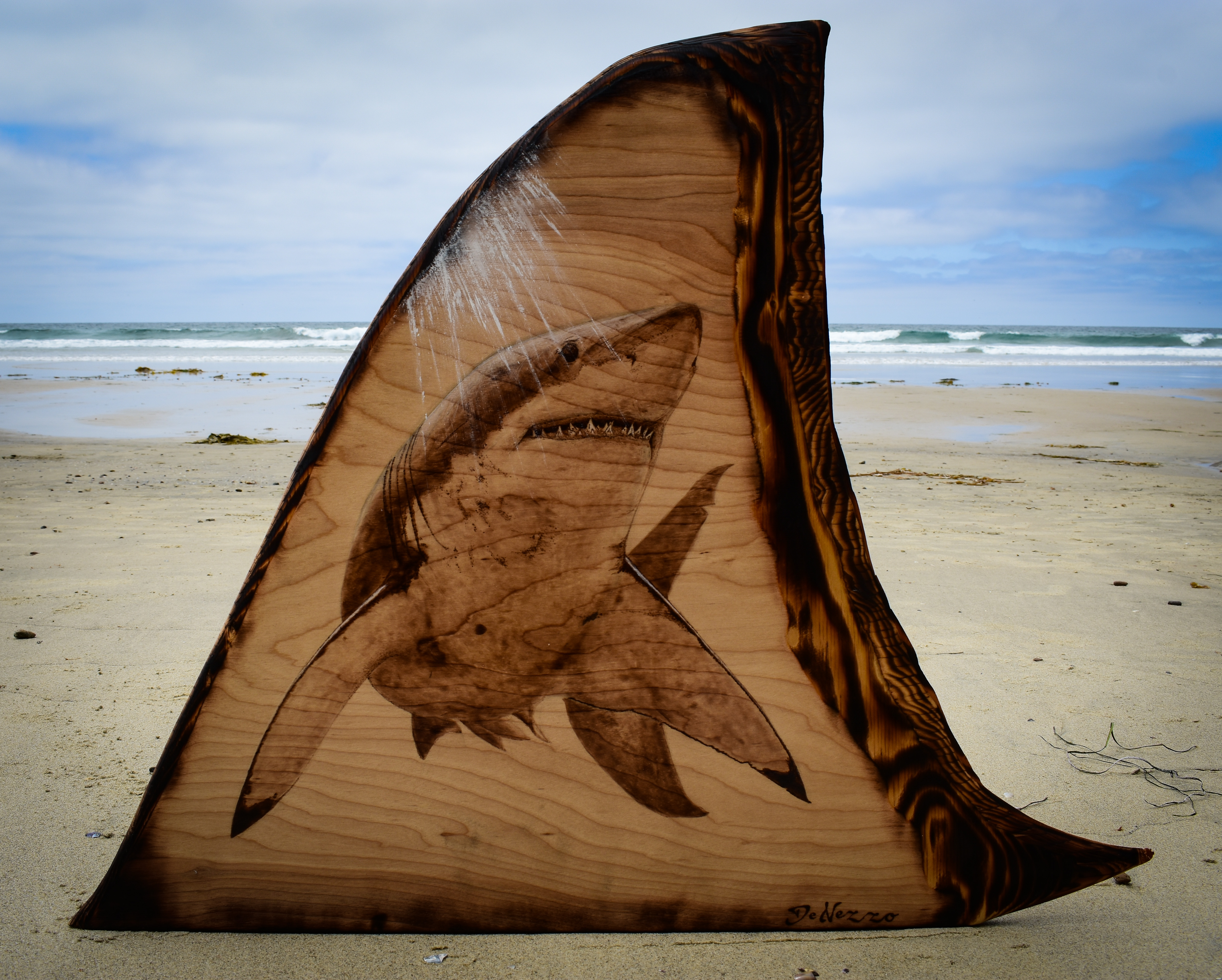 "Caption:  ""The King"" A woodburned image with acrylic paint highlights on a hand-carved wood shark fin. At nearly 2 feet tall, the fin itself was carved to be the size and shape of that on a full-grown adult white shark. Inspired by a George T. Probst photo (@iphot, Credit: Nicholas DeNezzo"