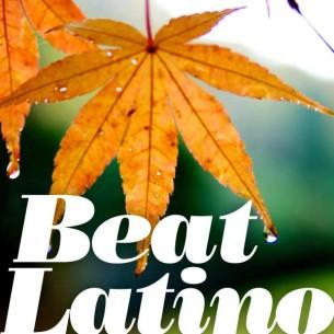 Beatlatino-autumn-2015-305x305_small