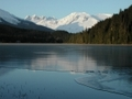 Tongass1_small