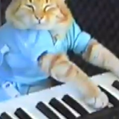 Caption: Keyboard Cat, Credit: Via YouTube.com