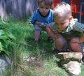 Investigating_kids_small