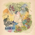 Sleepy_sun-_fever_small