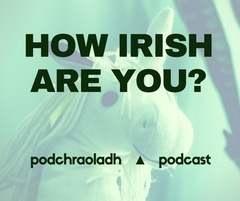 How irish are you