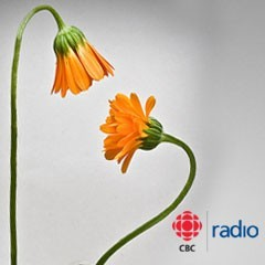 "Caption: CBC Radio's Outfront, Credit: <a href=""http://www.flickr.com/photos/91545223@N00/2743081060/"">Benson Kua</a>"