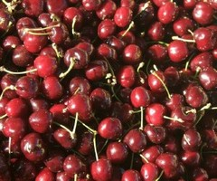Caption: Cherries in a French Market, Credit: Jim Rothschild, Baltimore, MD.