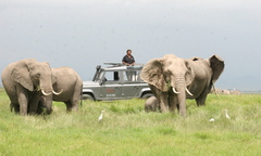 Caption: Soila Sayialel saves elephants , Credit: Soila Sayialel