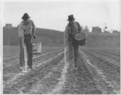 PRX » Series » Pastures of Plenty: A History of California Farm ...