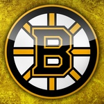 Boston bruins logo image1