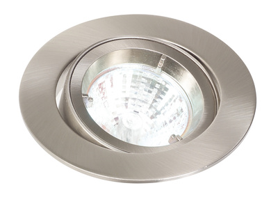 Stainless Steel Mains Voltage Tilt Downlight