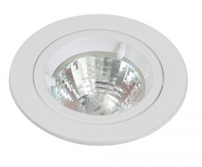 White Mains Voltage Fixed Downlight