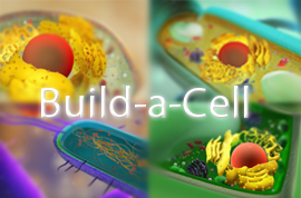 Build_a_cell-logo