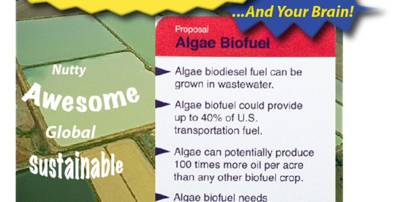 Candp-algae_biofuel_fact_card