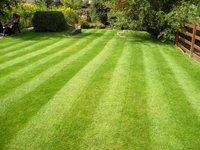 Lawn_care