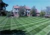 Lawn-cris-cross-pattern