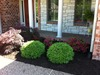 Mulch_it_llc_1