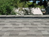 New_roof_029_medium