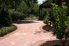 Jed_brandy_s_patio_resized