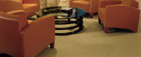 Carpet 20plus 20in 20sedalia 20mo