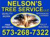 Nelson's_tree_service_columbia_mo.