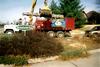 Homeowner'sassociationtreework