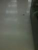 Junior's_proclean-tile_corner_after
