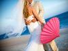 Pink_parasol