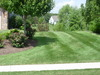 Lawn_pics_015