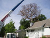 Arthur Ratliff Tree & Stump Removal - Columbia, MO