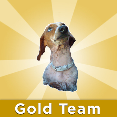 Rumples-on-the-gold-team