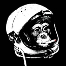 Cold-war-space-monkey_1_