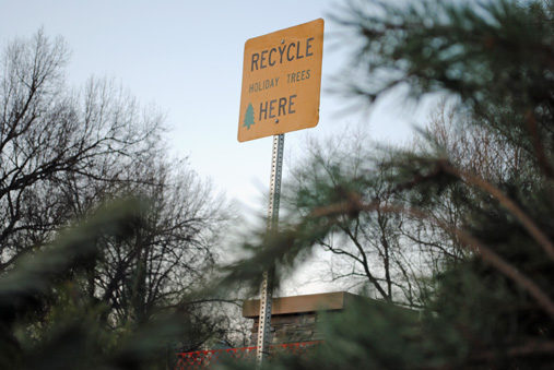 Prairie Village Christmas Tree Recycling