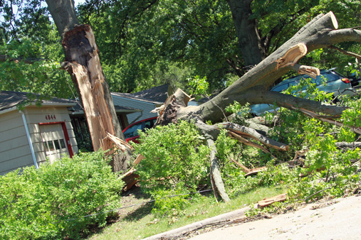 August 2011 storm damage in Prairie Village, KS