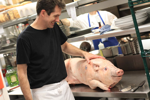 Story's Carl Thorne-Thomsen with a pig. That he later cooked. It was delicious.