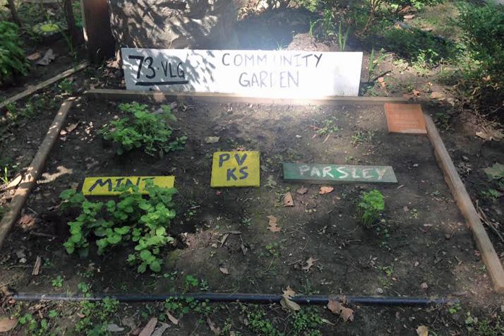 Community_Garden-2