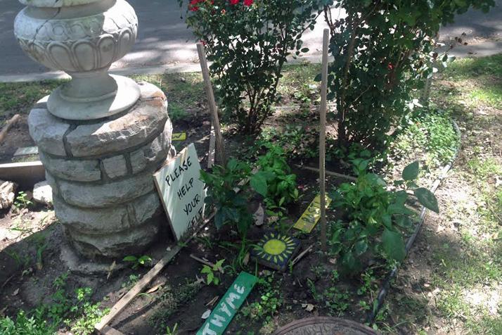 Community_Garden