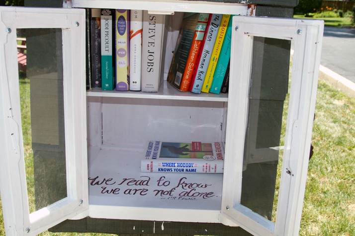 Little_Free_Library_82_Fontana