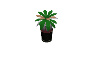 Potted%20plant