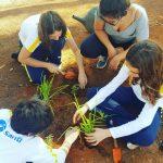 Indicadores podem ajudar a mostrar os avanços em práticas educacionais inovadoras