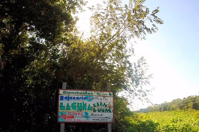 Hacen-fraude-con-terrenos-de-una-reserva-ecológica