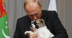 putin-ley-crueldad-animal