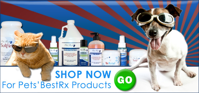 click here to view quality treatments for your pet's skin care needs
