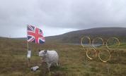 Shetland_olympics_1348528014_crop_178x108