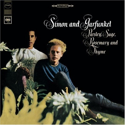 Simon_and_garfunkel_1355141483_resize_460x400