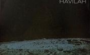 The_drones_havilah_1234887329_crop_178x108