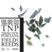 These New Puritans Field Of Reeds  pack shot