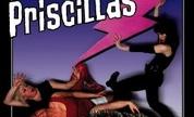 Priscillas_1237549731_crop_178x108