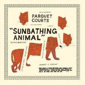 Parquet Courts  Sunbathing Animal  pack shot